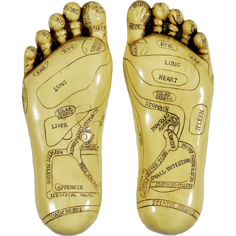 Pair of Painted Ivory Finish Resin Reflexology Feet